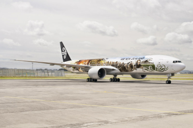 ADMARKS 1ST HOBBIT THEMED PLANE WRAP